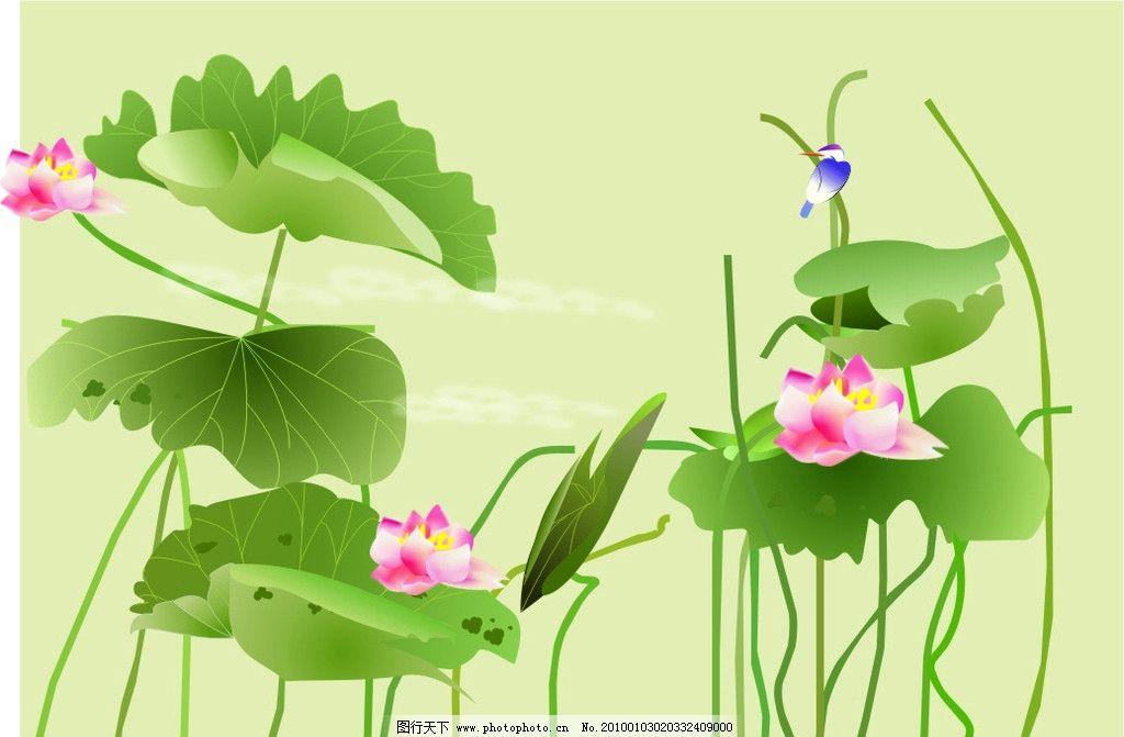荷花图 底纹 色彩 荷叶 鸟 绿色 花纹花边 底纹边框 矢量