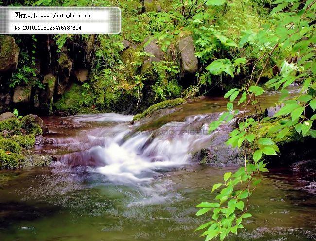 小溪 自然 水 树 森林 小溪 绿色 清爽 清秀 自然 生态 图片素材 风景