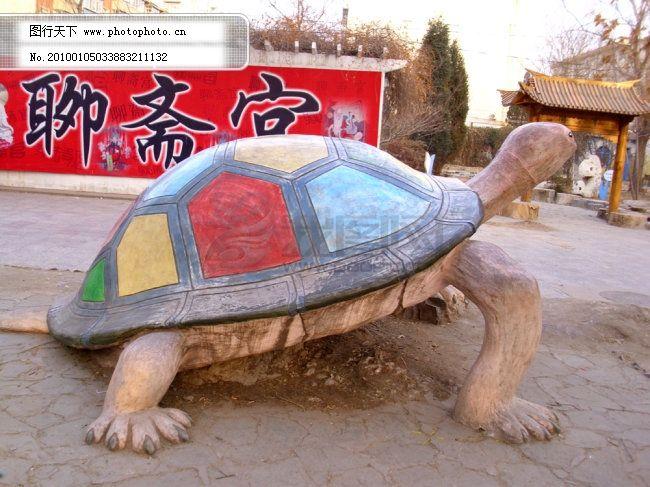 乌龟图片 乌龟的图片 乌龟图片下载 乌龟图库 巨型乌龟 巨型 图片素材