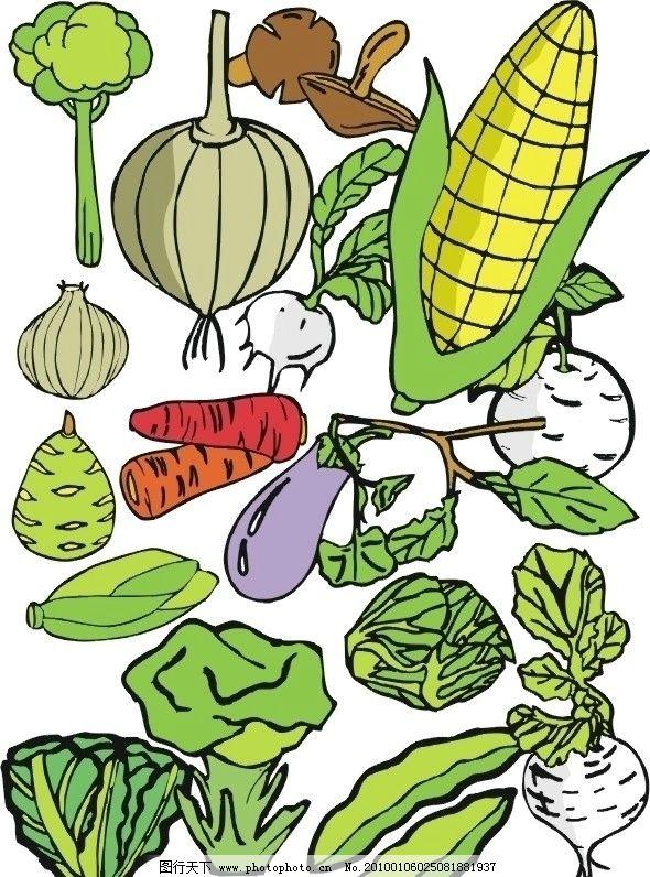 矢量蔬菜合辑(3) 矢量 蔬菜 合辑 玉米 茄子 萝卜 大葱 白菜 大豆