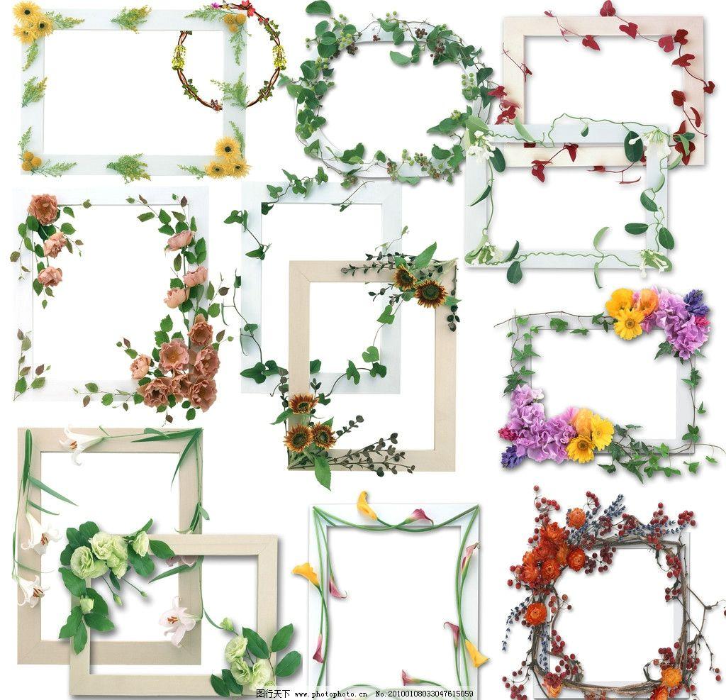 鲜花相框 边框 鲜花 相框 psd分层素材 源文件 72dpi psd