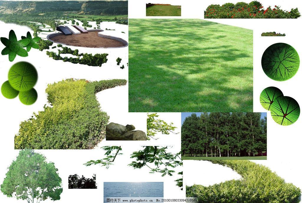 景观手绘树木线稿平面