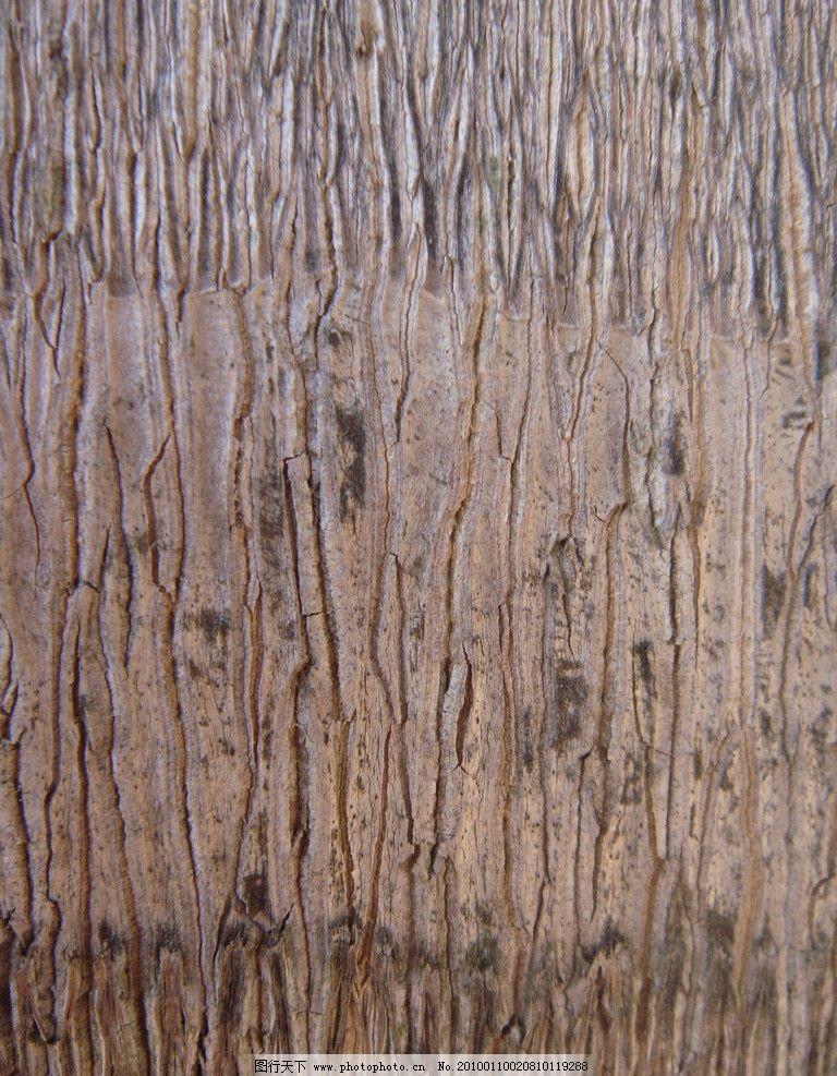 树皮纹理材质图片