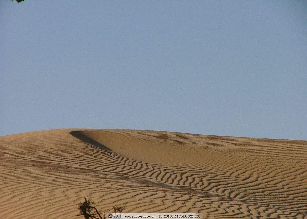 沙漠 内蒙古 额济纳旗 胡杨 大漠 红柳 戈壁 额济纳的大漠 自然风景