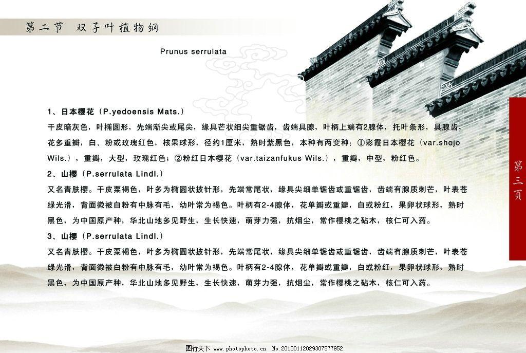 古典 山岚 围墙 古建筑 花纹 画册 书 广告设计模板 源文件
