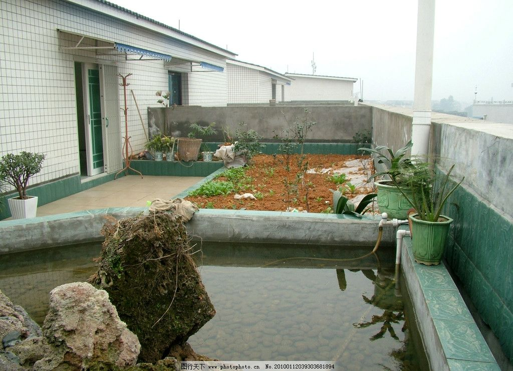 屋顶花园 室内设计 假山 鱼池 花园 室内摄影 建筑园林 摄影 100dpi j