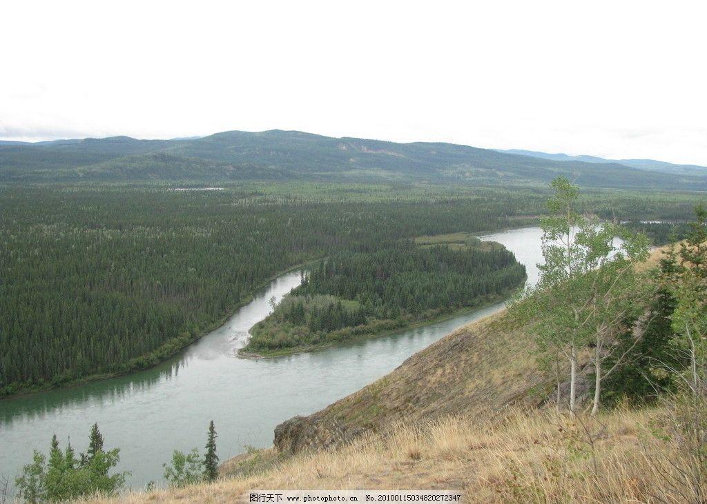 育空河 落基山脉 河流 森林 针叶林 植物 原始森林 风景 美丽
