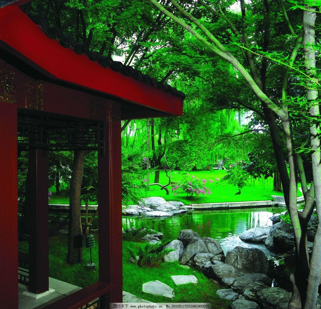 古典园林 苏州园林 树林