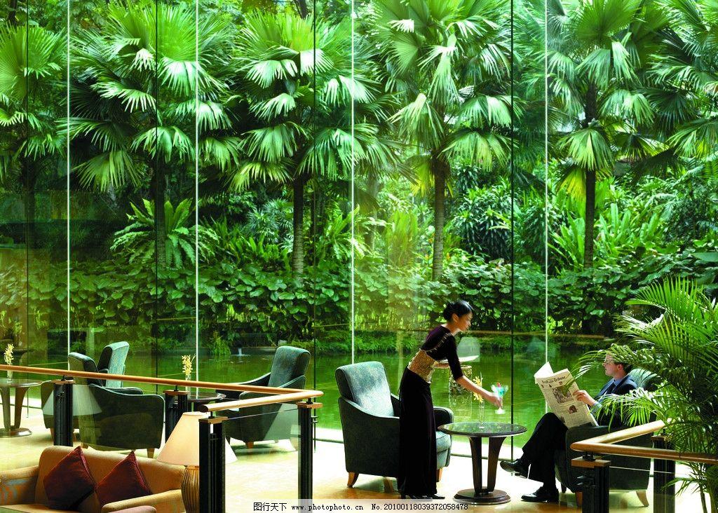 东南亚风格酒店 棕榈树 热带 泰式园林 服务 酒店 商务 成功人士 室内