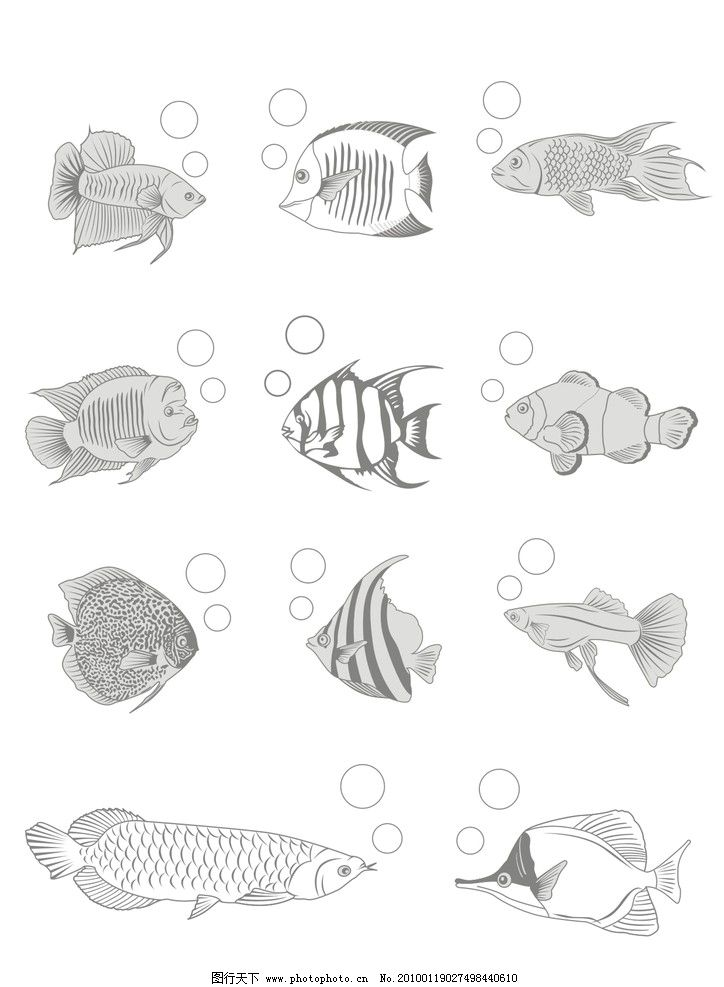 手绘鱼图片可爱