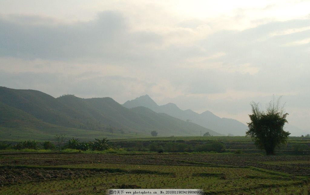 田地 风光 山水 石头 美丽 自然 树木 花草 云雾 太阳 天