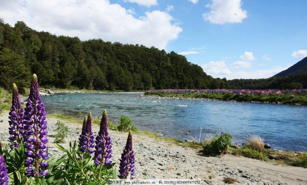 河流 森林 蓝天 白云 自然风景 自然景观 摄影 72dpi jpg