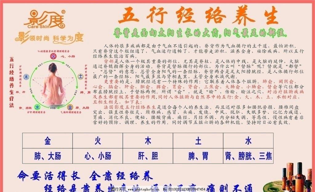 五行经络养生 金 木 水 火 土 人像 背部 海报 经络 养生 cdr9