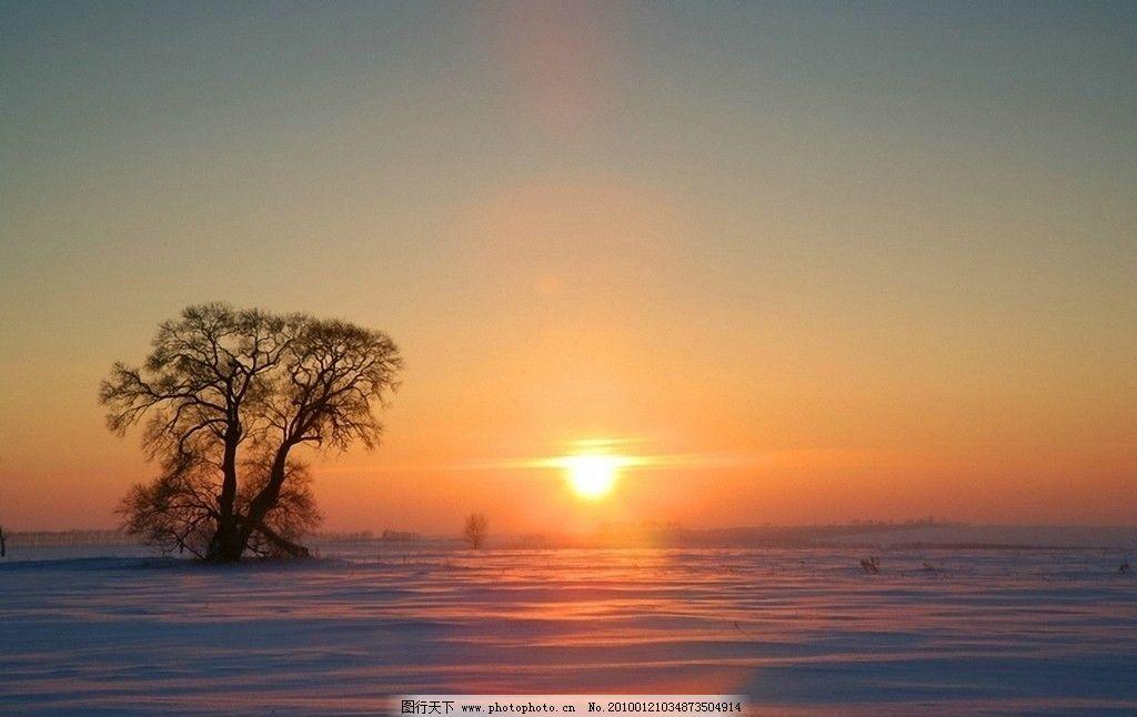 雪野夕阳 摄影图库 自然景观 自然风景 荒野 树木 晚霞