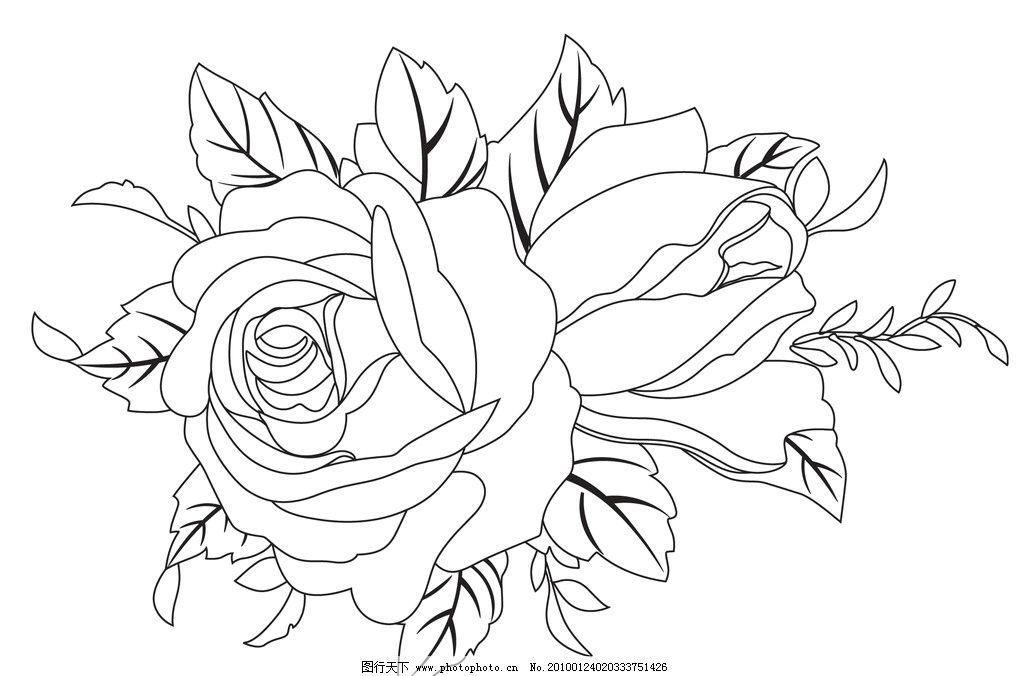 玫瑰花 花纹 花儿 轮廓 花纹花边 底纹边框 矢量