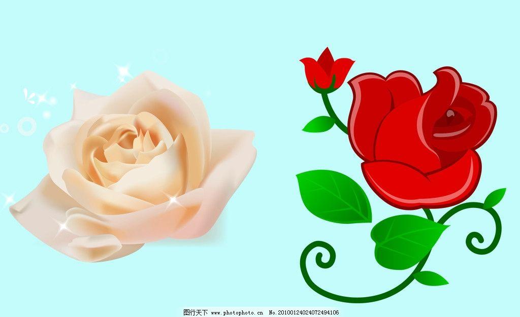 玫瑰 红玫瑰 好看的花 自然风景 矢量