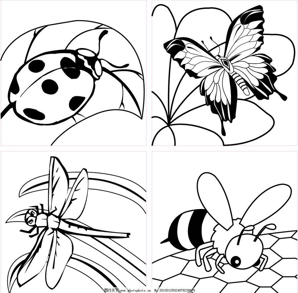 昆虫白描图 七星瓢虫 蝴蝶 蜻蜓 蜜蜂 昆虫 生物世界 大自然 虫 矢量