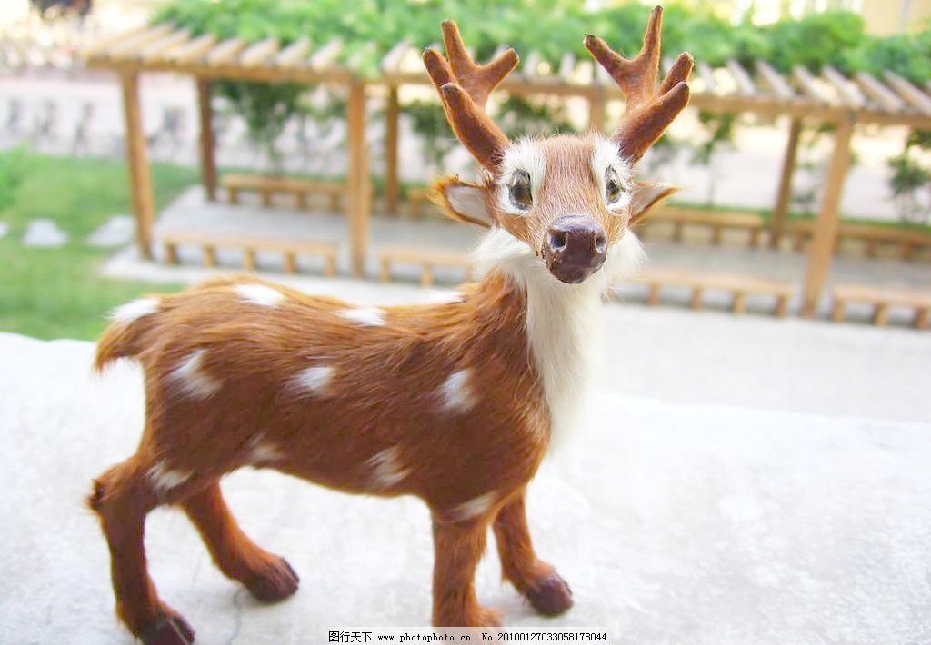 jpg 梅花鹿 摄影 生物世界 玩具 微距 小鹿 野生动物 玩具小鹿清晰