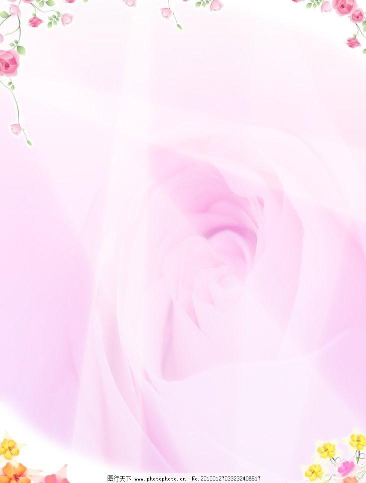 背景 粉色 玫瑰花 花 淡雅 小玫瑰 素气 温馨 可爱 甜美 甜蜜 背景