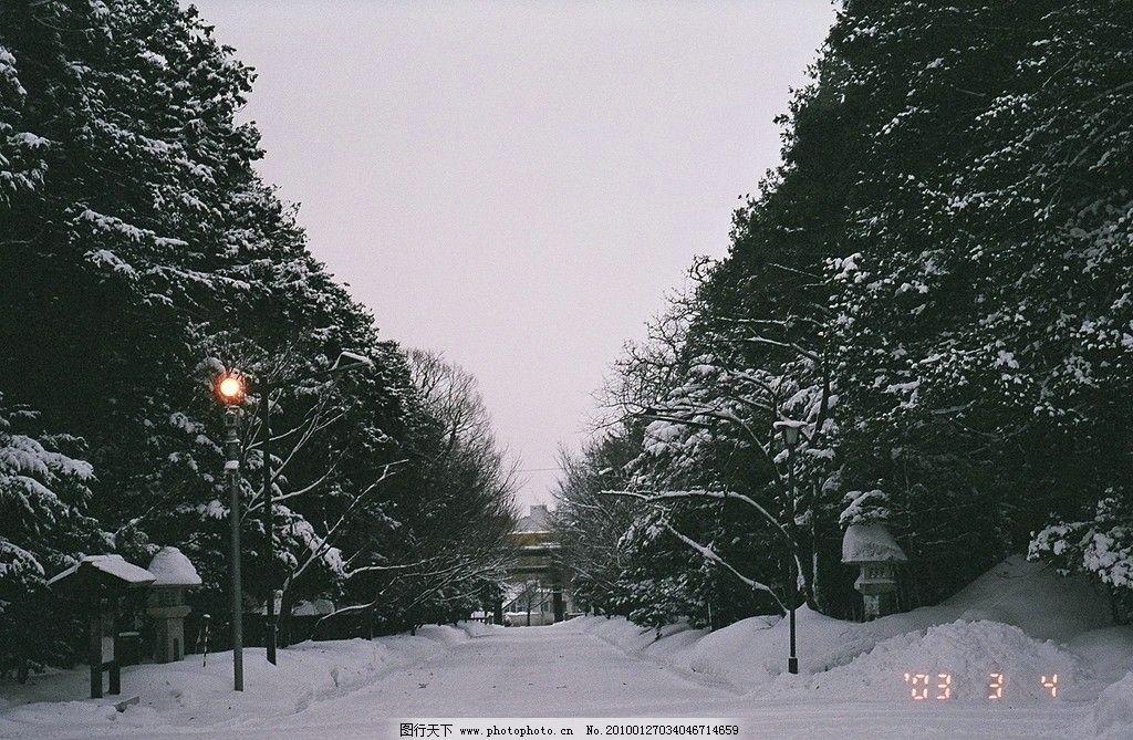 北海道/北海道神宮雪景图片