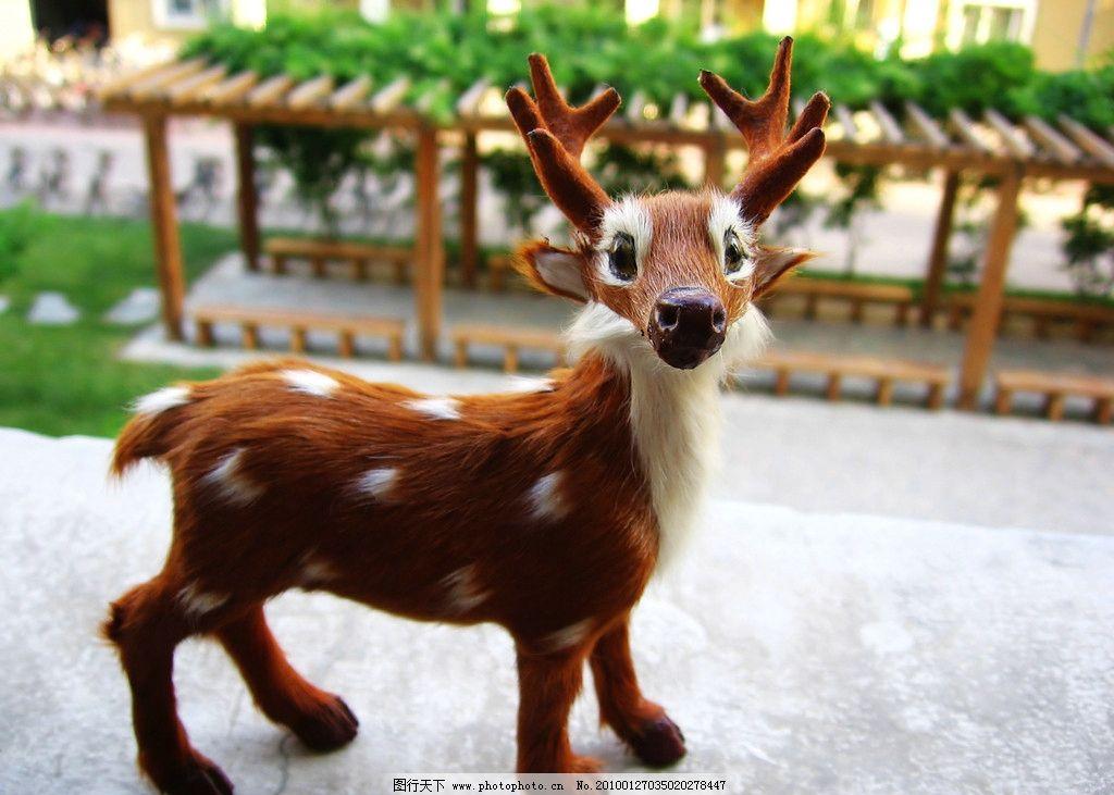 玩具小鹿清晰微距照片 梅花鹿 小动物照片 野生动物 生物世界 摄影
