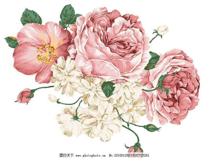 手绘牡丹花图片