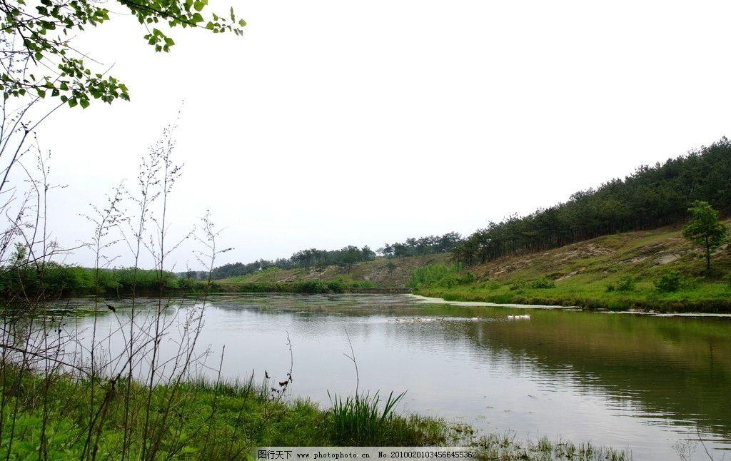 山边水塘 水草 乡村风景 摄影