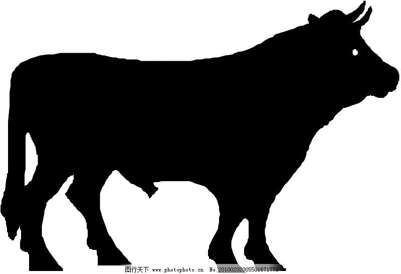常见动物0401