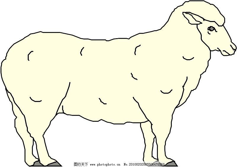 常见动物0591