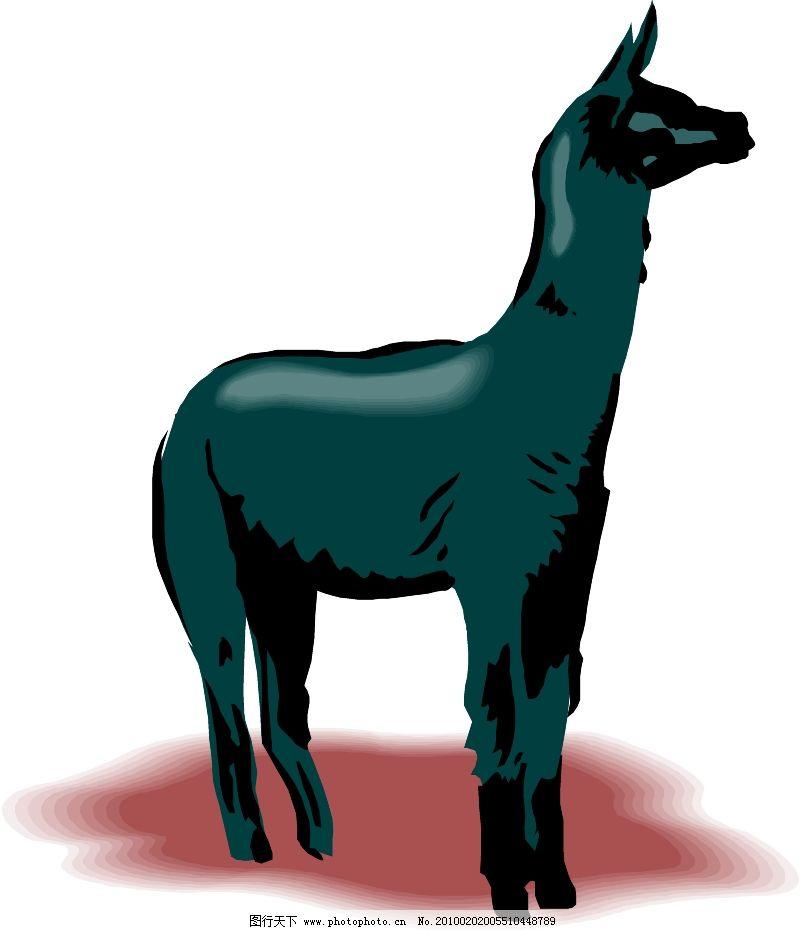 常见动物0293