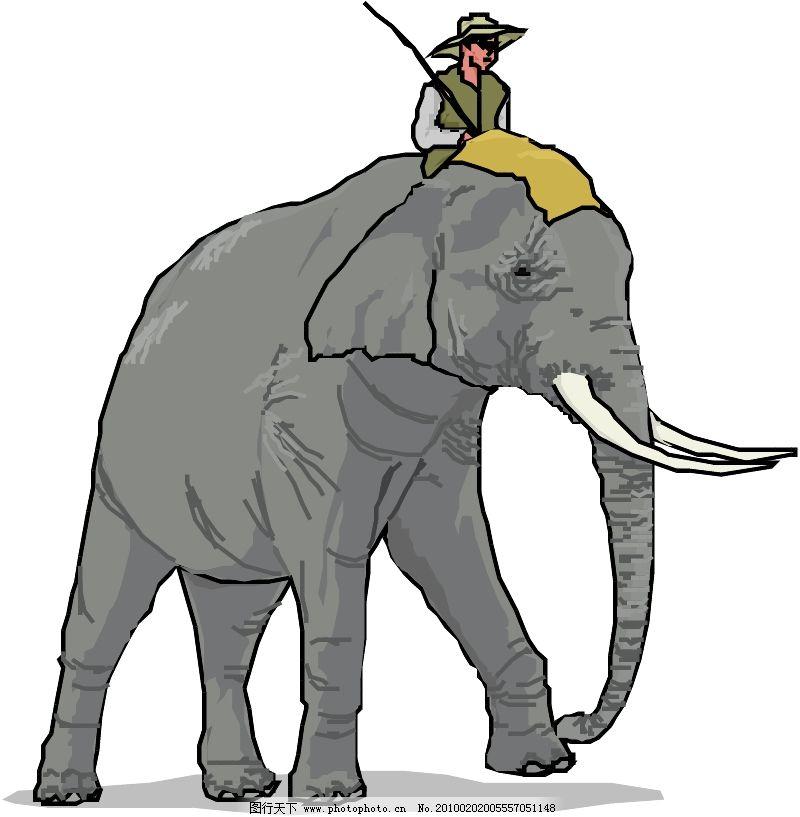 常见动物0367
