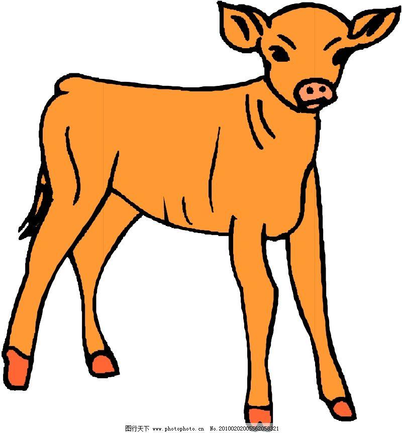 常见动物0454