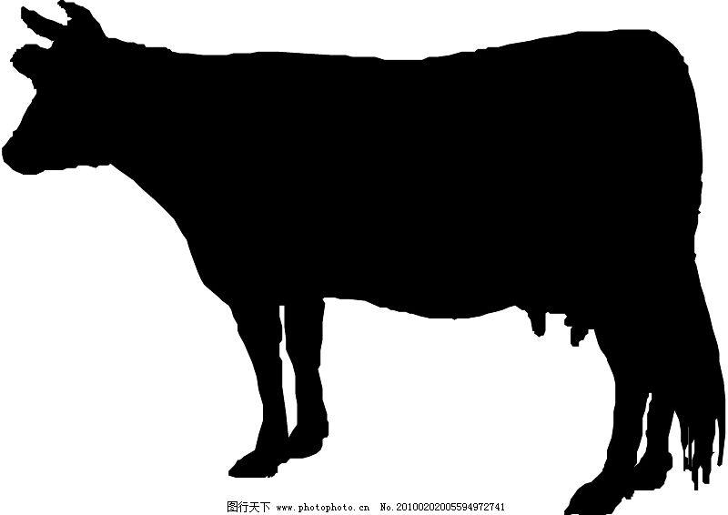 常见动物0130