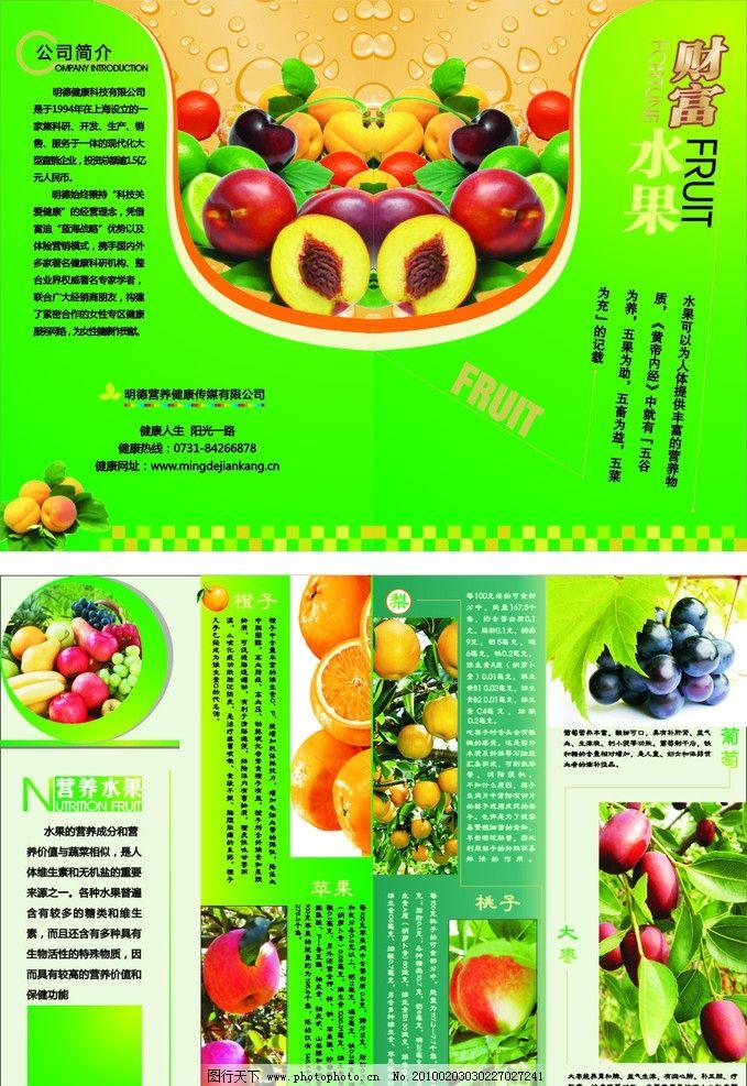 水果营养 苹果 梨桃 葡萄 枣橙 矢量
