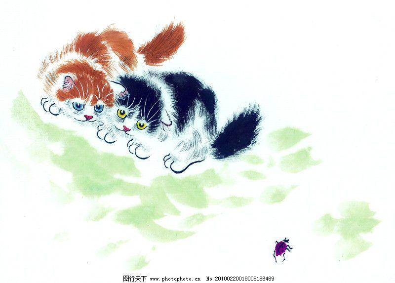 猫专辑0015