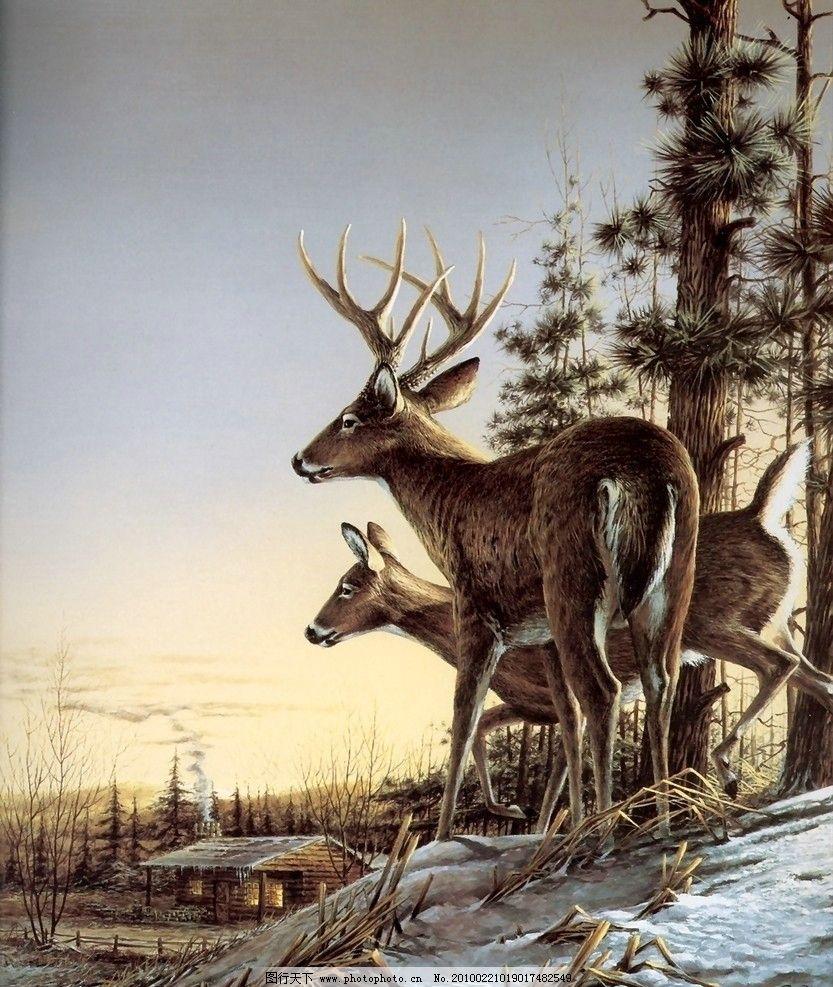 动物天堂 角鹿 绘画书法 文化艺术 设计 400dpi jpg