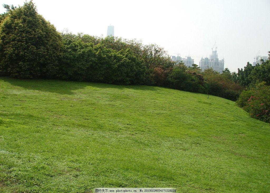草地 树木 春天 园林 天河公园 公园 自然风景 旅游摄影 摄影 314dpi