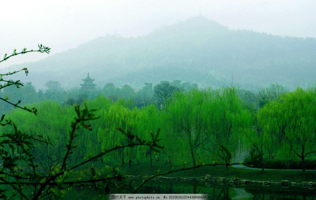 春景 柳树 树枝 水池 亭楼 山 蓝天 天空 背景 风景 摄影