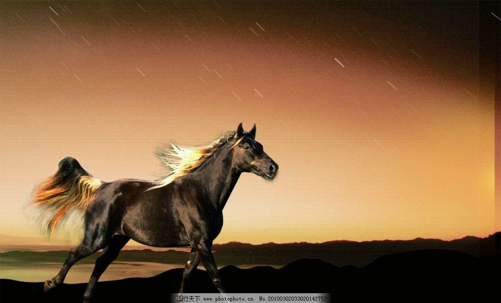 奔马 奔跑的马 飞驰 矢量图 源文件