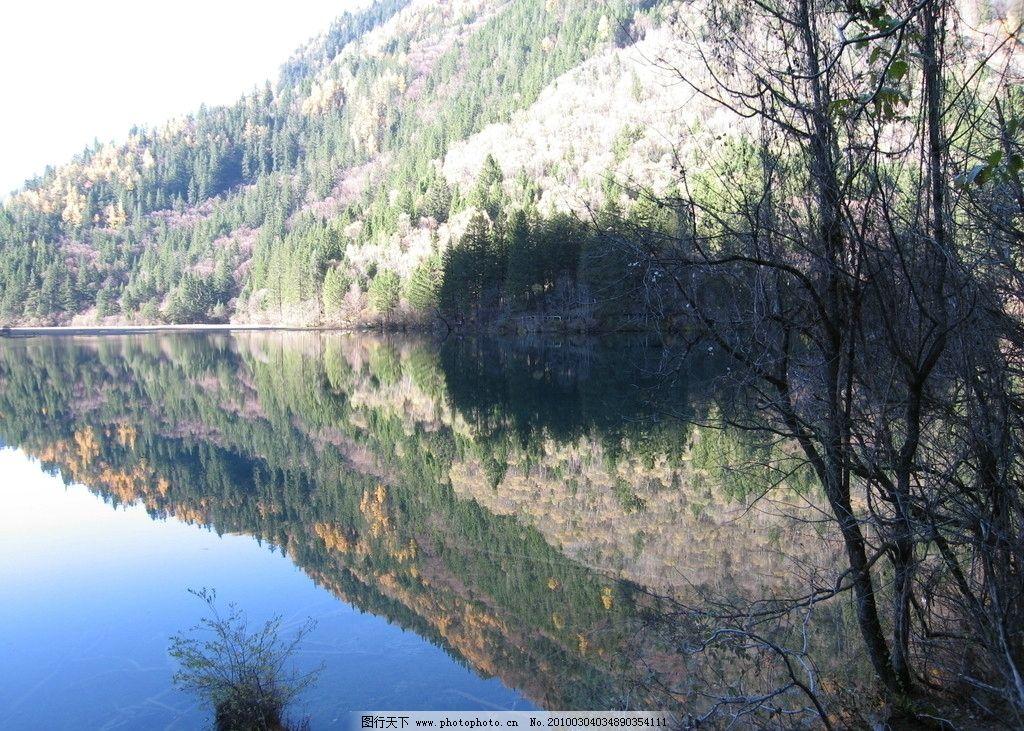 九寨沟 四川美景 九寨沟风景 秋天的风景 山水 美景 湖泊 风景 深林