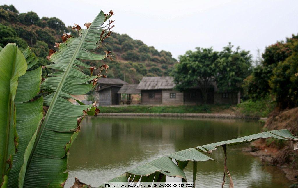 江南 水乡 建筑 小桥 流水 瓦房 亭台楼阁 走进江南 自然风景 自然