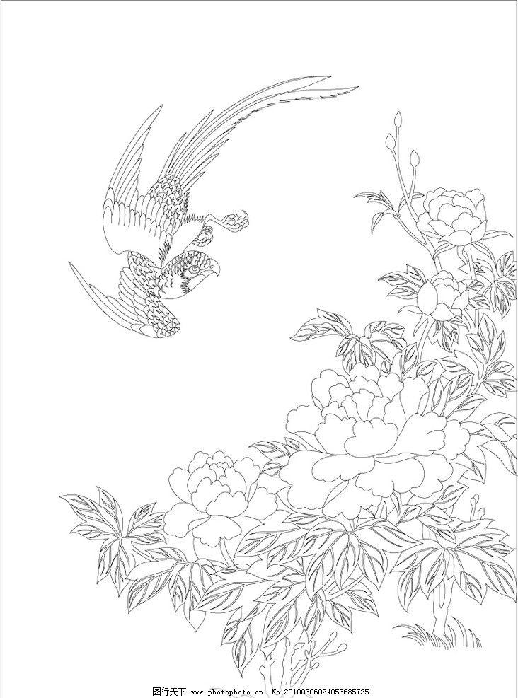 鸟观牡丹图片