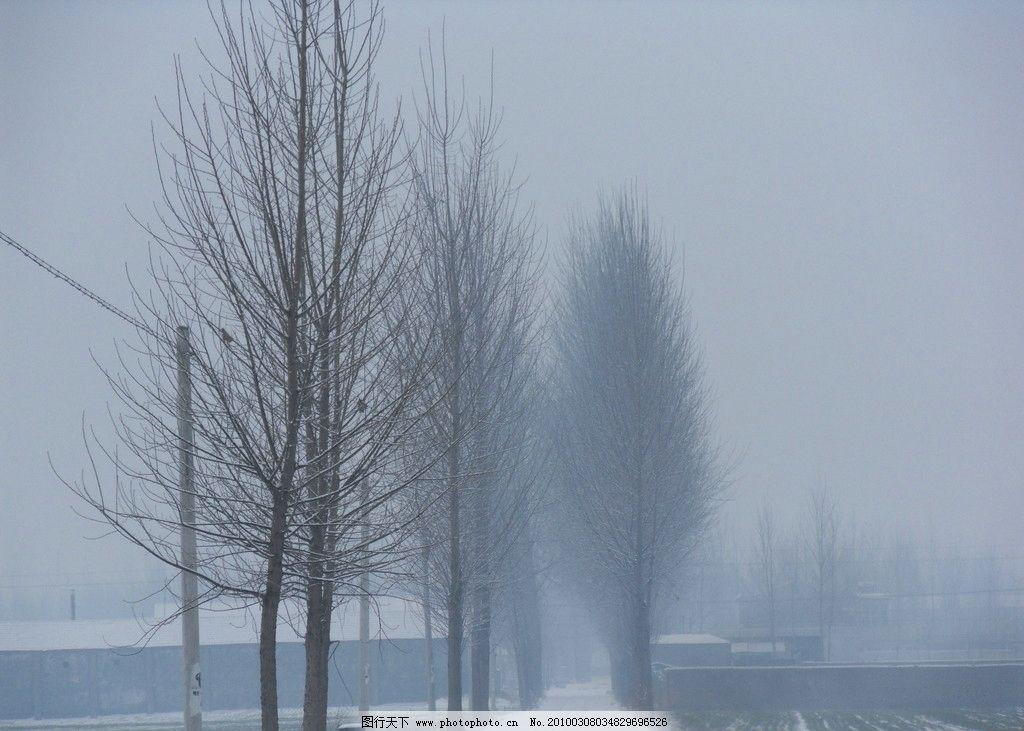雪后的乡间小路 雪 路 乡间 雪景 树 自然风景 自然景观 摄影 96dpi