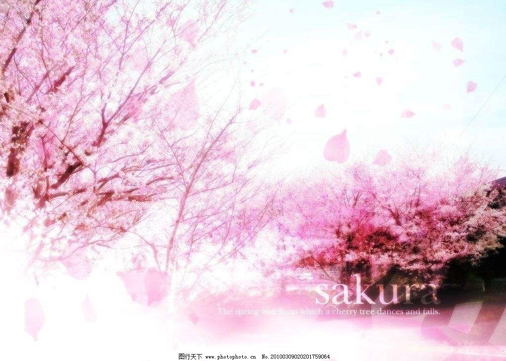 樱花 粉色 非主流 樱树 纷飞 梦幻 梦境