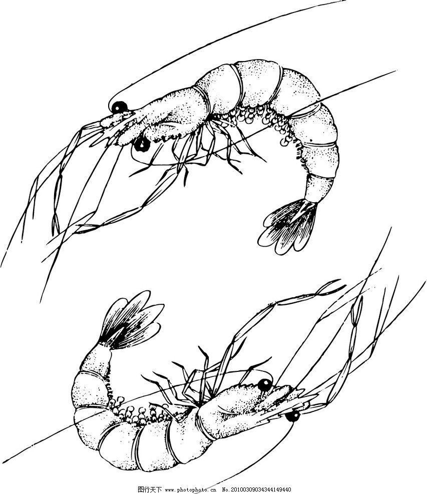 龙虾简笔画过程