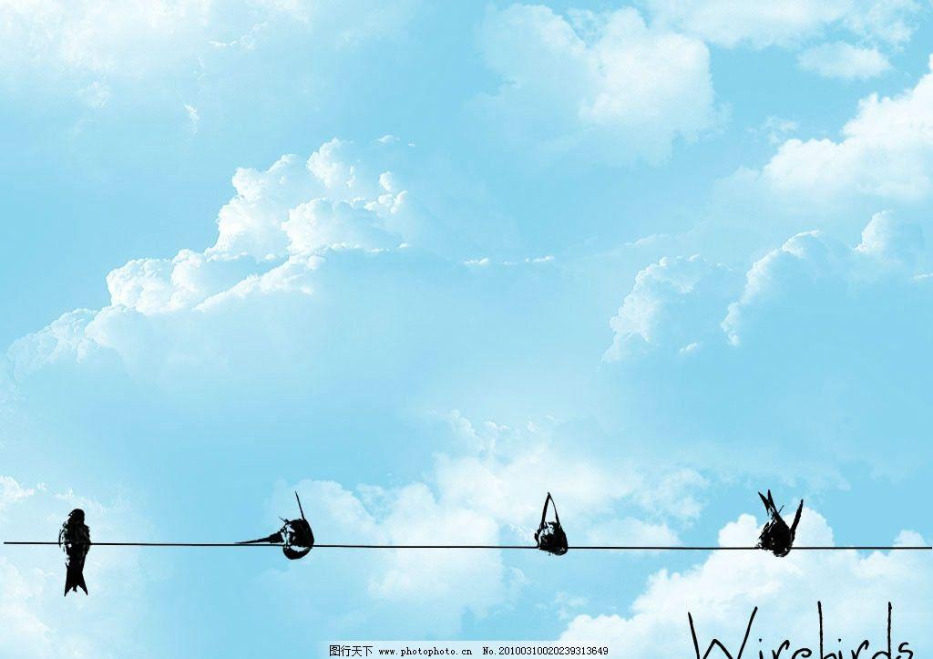 手绘 鸟 麻雀图片