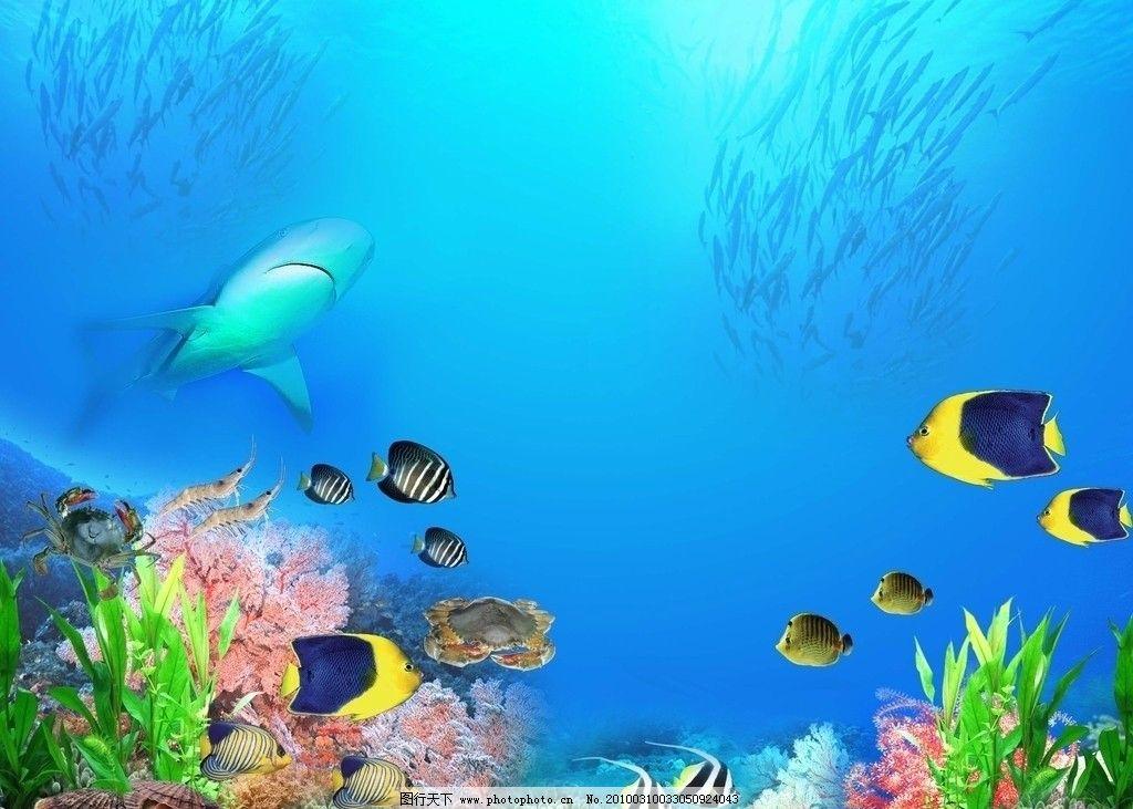 海底世界 热带鱼 鲨鱼 珊瑚 螃蟹 大虾 海草 鱼群 海底的蓝色 psd分层