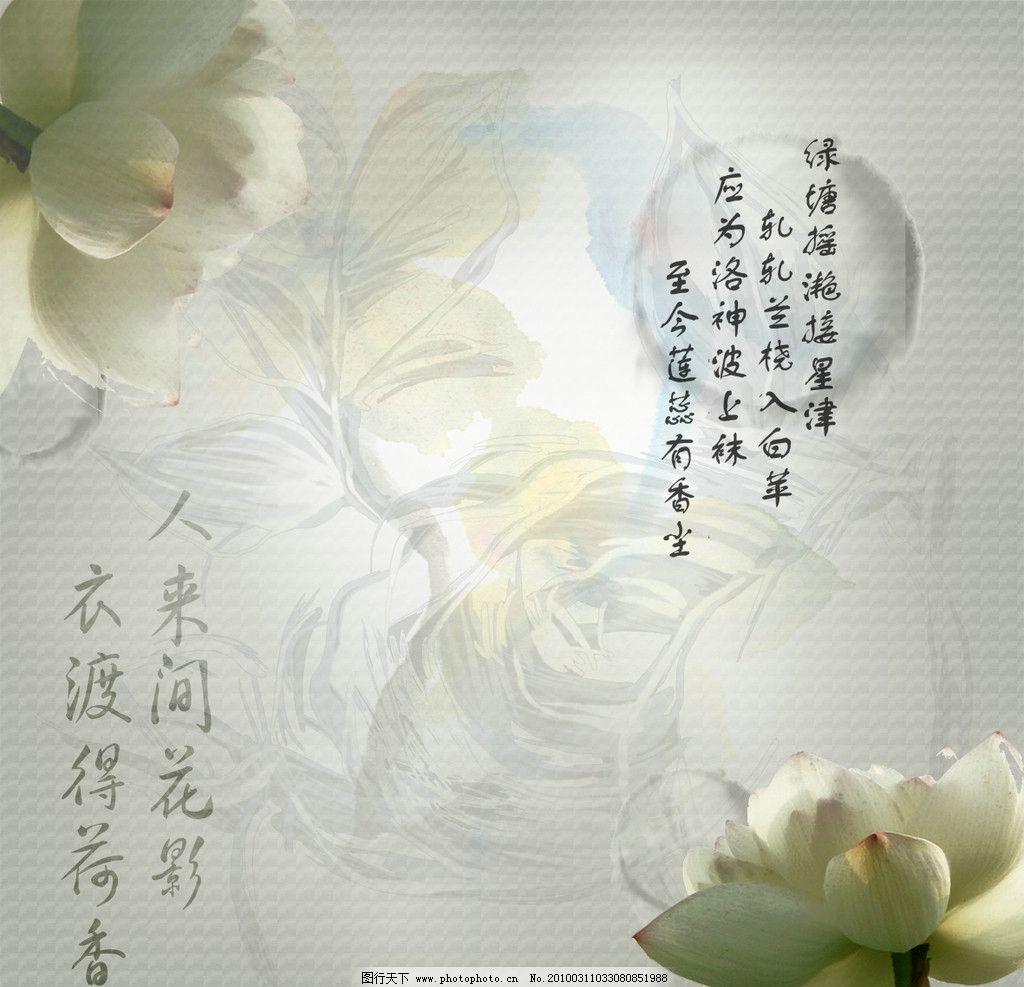 古风莲花 莲花 线条 水墨