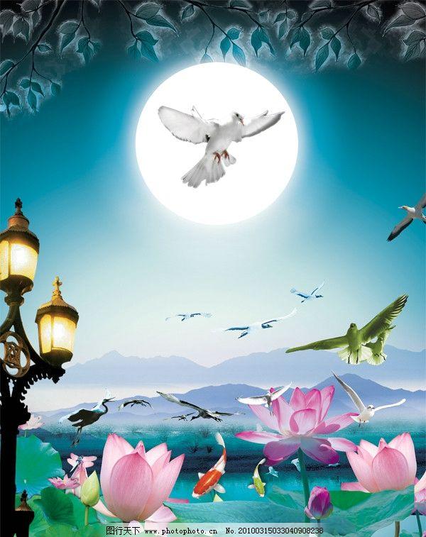 莲花 月光 月亮 路灯 远山 群山 池塘 鱼 金鱼 飞鸟 海鸥 鸽子 丹顶鹤
