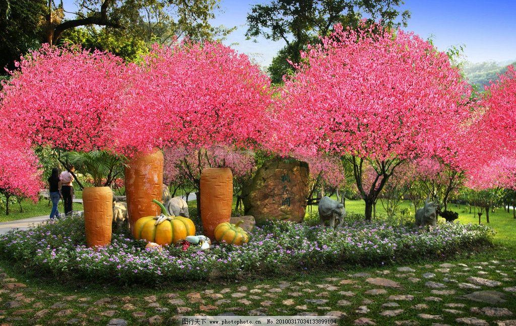树 白云山风景 风景 国内风景 广州风光 山 广州城市图片